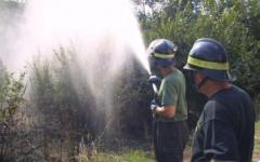 Massa, muore mentre dà fuoco alle erbacce
