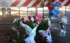 Firenze, Cascine: zia e nipote morirono travolte da un albero. Tre indagati per omicidio colposo