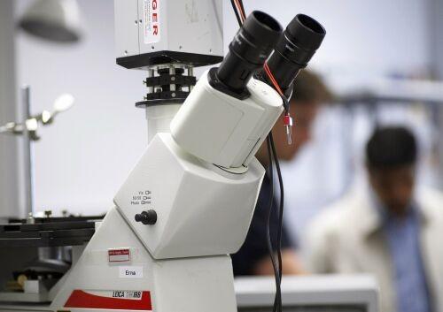 Melanoma, un gene coinvolto nelle cellule staminali tumorali
