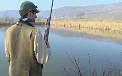 Caccia in Toscana, preapertura mercoledì 2 settembre: le specie cacciabili in ogni provincia