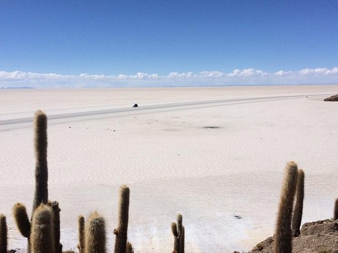 Il salar di Uyuni, visto dall'isola Incahuasi