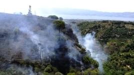 Un incendio boschivo agli inizi