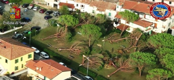 Strage di alberi a Lazzeretto, nel comune di Cerreto Guidi, vicino a Empoli, il 19 settembre 2014