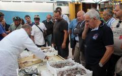 Viareggio: pesce fresco confezionato sul peschereccio. Ecco il progetto Coldiretti
