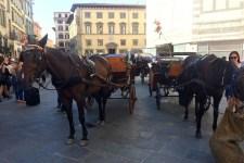 Una foto d'archivio di una carrozza a cavallo