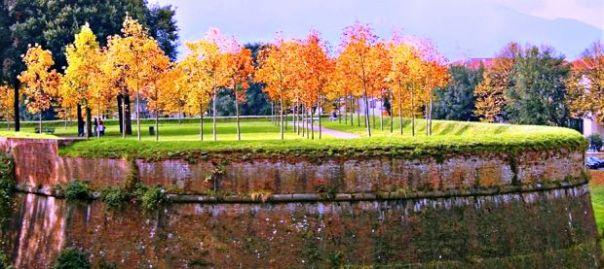 Una veduta dei bastioni delle mura di Lucca