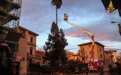Maltempo, Enel annuncia: riportata la luce al 98% delle famiglie colpite dalle raffiche di vento