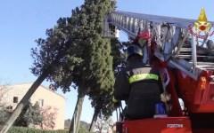 Maltempo, Toscana: ancora novemila famiglie senza energia elettrica nelle province di Arezzo, Lucca e Pistoia