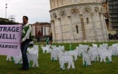 Pisa, sotto la Torre flash mob animalista per una «Pasqua senza sangue»