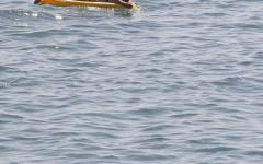 Estate 2016, immersioni sub e bagni in mare: ecco i pericoli da evitare. Sicurezza in acqua