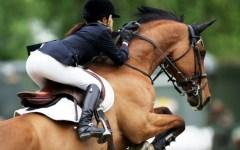 Pisa, cade da cavallo: gravissima una ragazza di 19 anni