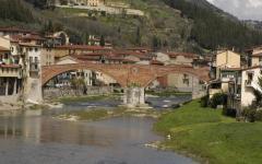 Anziani, estate sicura: ecco il numero verde per chi vive in Valdarno e Valdisieve