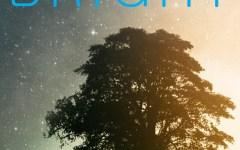 Notte dei Ricercatori: in Toscana si chiama «Bright»