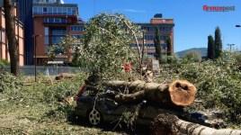 I danni del nubifragio d'inizio agosto, a Firenze