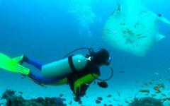Grosseto, isola di Giannutri: sub muore durante un'immersione