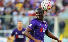 Verona-Fiorentina  (mercoledì alle 20,45, diretta su Sky e Mp), viola per vincere dopo 3 sconfitte. Tandem Kalinic-Babacar?