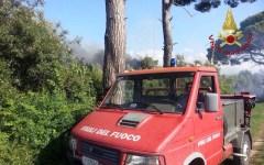 Pisa: incendio nella pineta del Calambrone. A rischio i bungalow di un camping