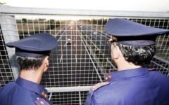 Grosseto, sassi dal cavalcavia: arrestati tre ragazzi ventenni