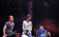 Firenze: alla Pergola Luca Zingaretti interpreta  «The Pride» di Campbell