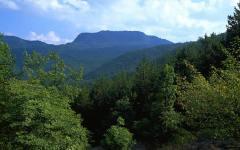 Arezzo, Parco Foreste casentinesi e Club Alpino Italiano: intesa per la manutenzione dei sentieri