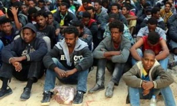 migranti-4-8-3