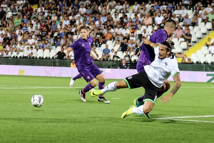 cenesa-Fiorentina