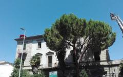 Firenze: sono scesi dal tetto i tre giovani occupanti abusivi che protestavano. Arrestati dalle Forze dell'ordine