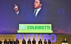 Firenze: Coldiretti in piazza con Renzi per l'olio extravergine Made in Italy