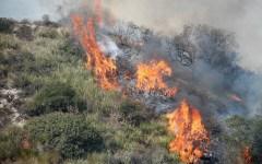 Castel Focognano (Ar): incendio boschivo in Pratomagno circoscritto dai vigili del fuoco