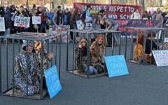 Firenze: flash mob del movimento animalista contro le uccisioni per l'industria della pelliccia
