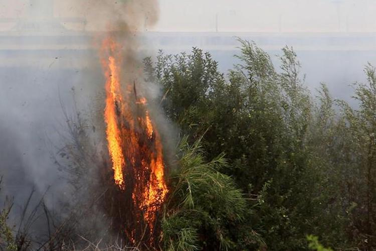 Incendi, Toscana: evacuato a scopo precauzionale un residence a Castiglione
