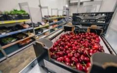 Commercio: crisi della piccola distribuzione, persi 160.000 esercizi in 8 anni