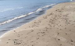 Feniglia (Gr) : Bimba di 4 anni rischia di annegare, è grave al meyer