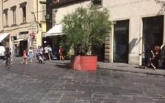 Firenze, sicurezza: San Lorenzo ulivi blindati, fioriere via Martelli, catene via Cerretani (foto)