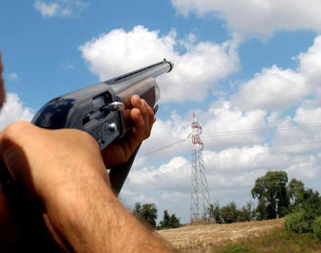 Incidente di caccia nei boschi tra Sovicille e Rosia: muore un 69enne