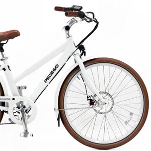 noleggio bici elettriche firenze