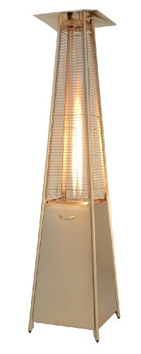 AZ Patio Heaters HLDS01-CGTSS Review