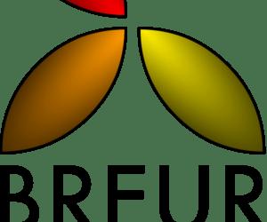 FireSpike Logo Flashback