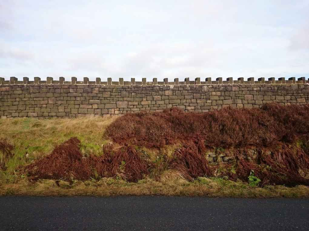 pattern inspiration: the dry stone wall enclosing Delph Reservoir Sailing Club