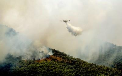 Long Fire Seasons Has Australia Considering a Flying Firefighting Fleet