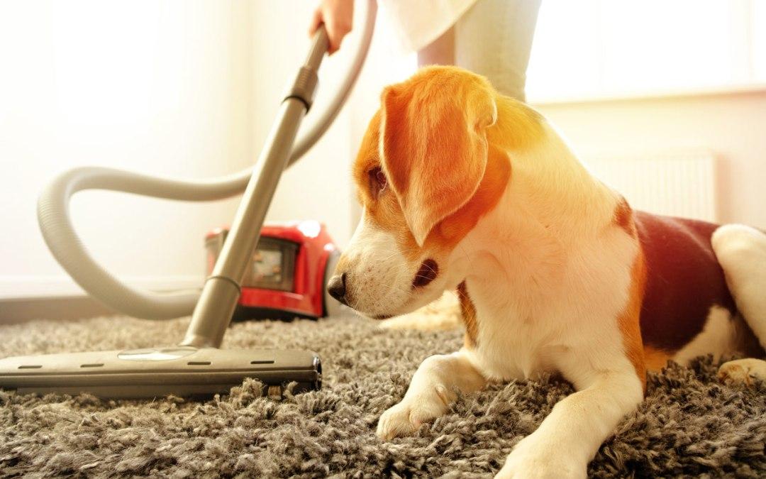 Vacuum Recalled Due to Fire Hazard