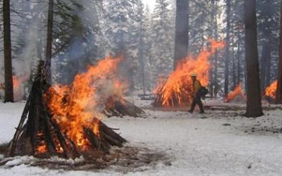 BC wildfire fighters to get occupational disease coverage