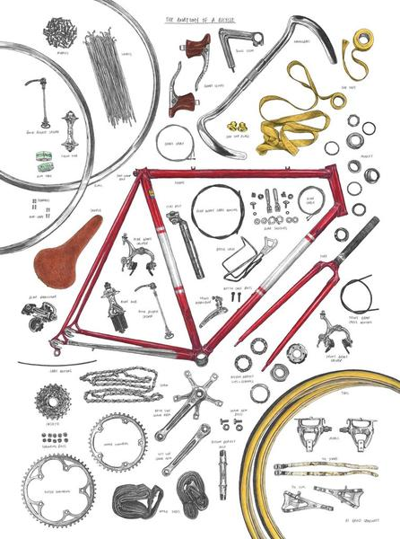 David Sparshott - The Anatomy of a Bicycle print
