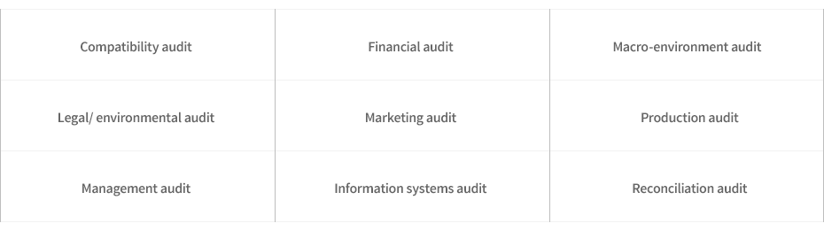 Compatibility audit, Financial audit, Macro-environment audit, Legal/environmental audit, Marketing audit, Production audit, Management audit, Information systems audit, Reconciliation audit