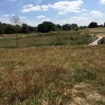 SchoolVisit-WetlandsTrail