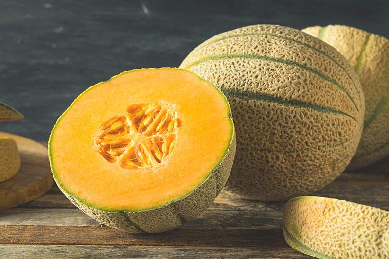 Yubari King melons - Most expensive ingredients