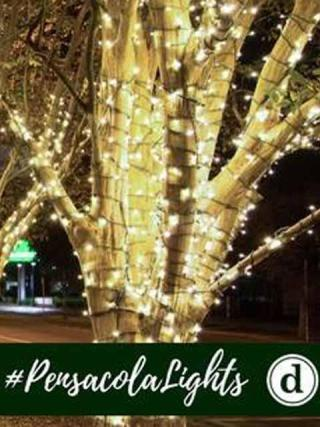 First City Lights Festival: Lighting Ceremony