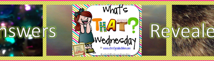 What's That Wednesday (Answers Revealed!)