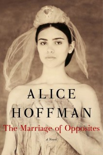 https://www.goodreads.com/book/show/23492741-the-marriage-of-opposites?ac=1