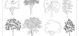 FIA Trees CAD Blocks 02
